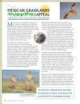 June 2005 INSIDE - American Bird Conservancy - Page 6