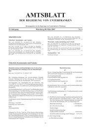 Regierungsamtsblatt 4/07 - Regierung von Unterfranken - Bayern