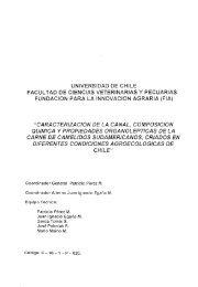 Caracterización de la canal, composición química y propiedades ...