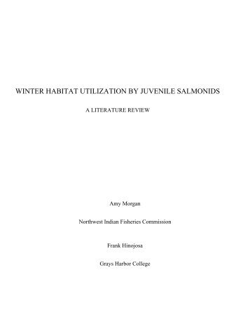 winter habitat utilization by juvenile salmonids - NWIFC Access ...