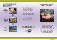 ADENOVIRUS VACCINE TYPE 4 AND TYPE 7 - MILVAX