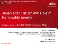 Japan after Fukushima: Role of Renewable Energy