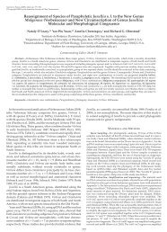 Reassignment of Species of Paraphyletic Junellia s. l. to the New ...
