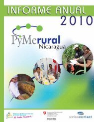 Informe PYMERURAL Nicaragua 2010