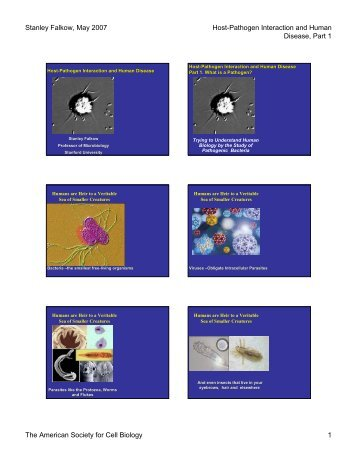 Host-Pathogen Interaction and Human Disease