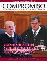 Consultar Publicación - Consejo de la Judicatura Federal