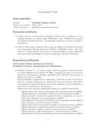 Curriculum Vitae - Departamento de Matematicas - Universidad ...