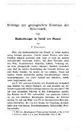 Beiträge zur geologischen Kenntnis der Steiermark.
