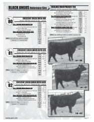 Pages 37 to 48 - SaskLivestock