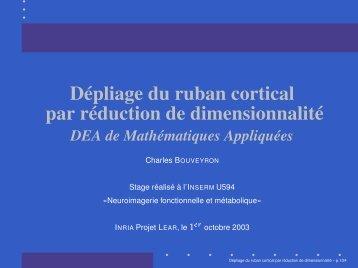 Dépliage du ruban cortical par réduction de dimensionnalité - Mistis
