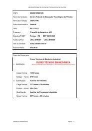 Ministério da Educação - Instituto Federal Sul-rio-grandense