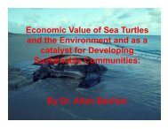 Economic Value of Sea Turtles and the Environment and as a ...