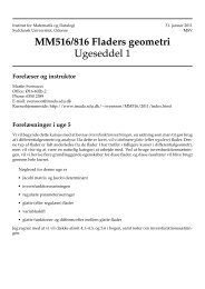 MM516/816 Fladers geometri - Institut for Matematik og Datalogi ...