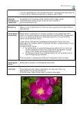 nationalparkplan 2010 – 2016 for nationalpark thy bilag - Page 7