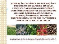 adubação orgânica na formação e produção do cafeeiro em solo ...