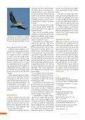 For dyrt at holde Flade Sø tørlagt - DR - Page 4