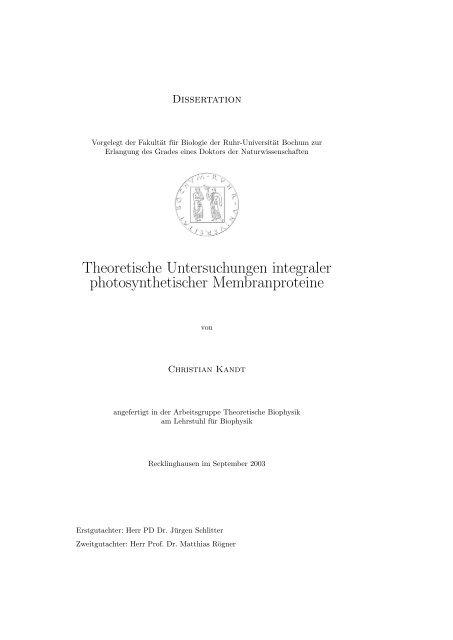 Theoretische Untersuchungen integraler photosynthetischer ...