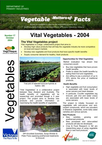 No.17 download pdf 152kb - Vegetable Growers Association of ...