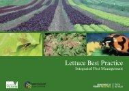 Lettuce Best Practice - Department of Primary Industries