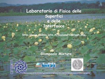 Laboratorio di Fisica delle Superfici e delle Interfacce