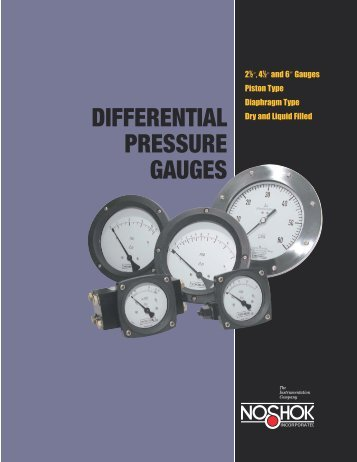 NOSHOK Differential Pressure Gauges