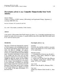 Bryocamptus pilosus n. sp.(Copepoda: Harpacticoida) from North ...