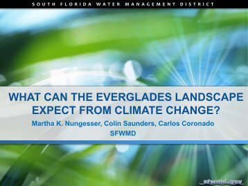 what can the everglades landscape expect from climate change?