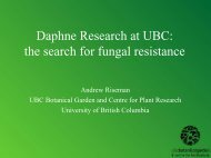 Andrew Riseman: Daphne Research at UBC