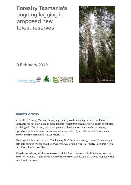 Forestry Tasmania's ongoing logging in proposed new forest reserves