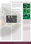 Myxobakterien sind Gram-negative Bakterien, die sich ... - DECHEMA - Seite 6