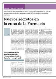 Nuevos secretos en la cuna de la Farmacia Investigadores