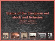 Status of the European eel stock and fisheries