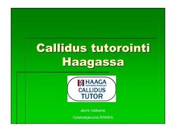 Callidus-tuutorointi haaga instituutin ammattikorkeakoulussa