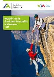 Overzicht van de risicokapitaalverschaffers in Vlaanderen 2013