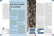 Vertrieb mit Partnern im Ausland, KMU-Magazin 9 - MSM Group AG