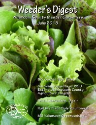 June 2013 - WSU Whatcom County Extension - Washington State ...