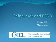 Safeguards and REDD: a primer - Rights and Resources Initiative