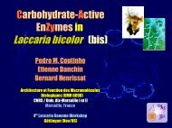 Carbohydrate-Active Enzymes in Laccaria