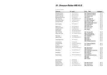 01. Dressur-Reiter-WB Kl.E - Hippo Electronic