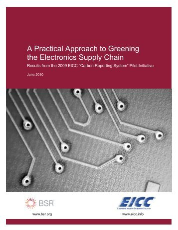 A Practical Approach to Greening the Electronics Supply Chain - BSR