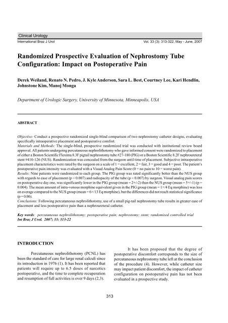 Randomized Prospective Evaluation of Nephrostomy Tube