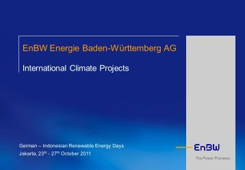 Bio energy development: Experience in managing CDM projects