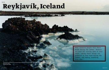 Dwell / Detour / Reykjavik - shonquismoreno
