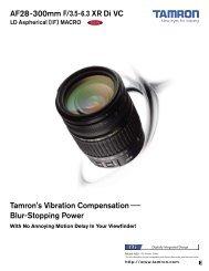 AF28-300mm F/3.5-6.3 XR Di VC (Model A20) - Tamron