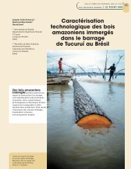 Caractérisation technologique des bois amazoniens immergés dans ...