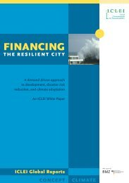 Report-Financing_Resilient_City-Final