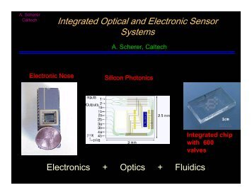 Integrated Optical and Electronic Sensor Systems