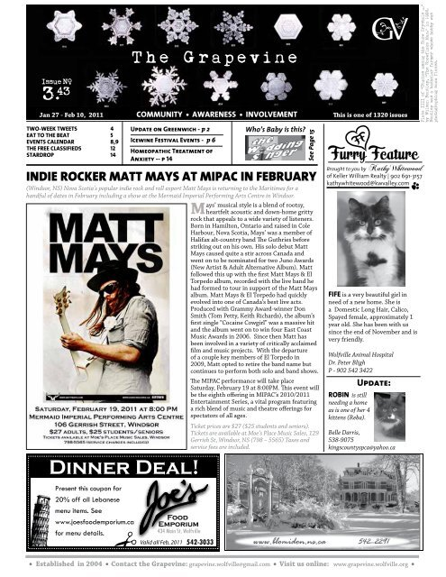 indie rocker matt mays at mipac in february - The Grapevine
