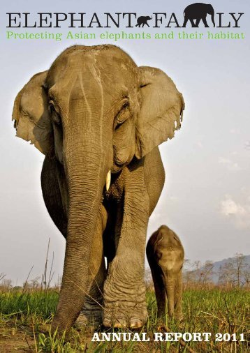 ANNUAL REPORT 2011 - Elephant Family