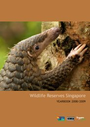 Click here for a downloadable version. - Wildlife Reserves Singapore
